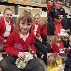 Ymweliad â Pets at home: